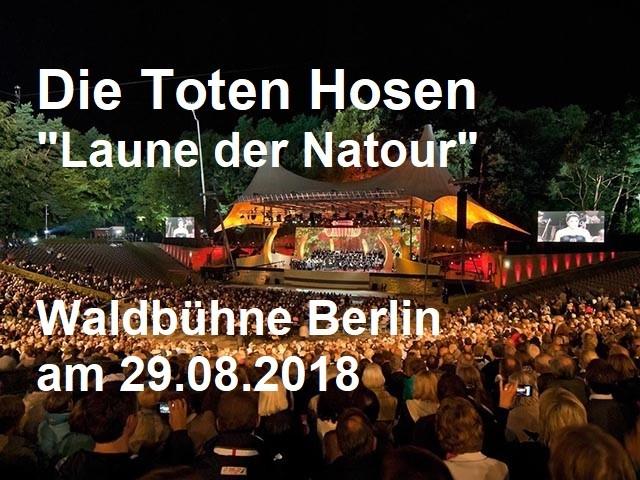 alecsa_hotel_die_toten_hosen_waldbuehne_berlin© visitBerlin